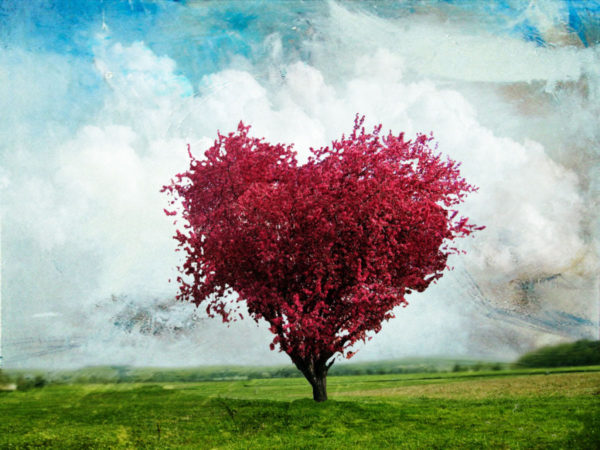 Natureza Humana e Felicidade.