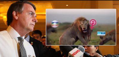 O Leão Fascista – A Ameaça do Golpe.
